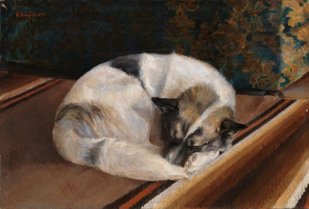 Makaava koira
