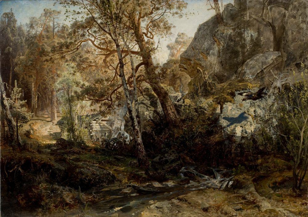 Suomalainen metsämaisema