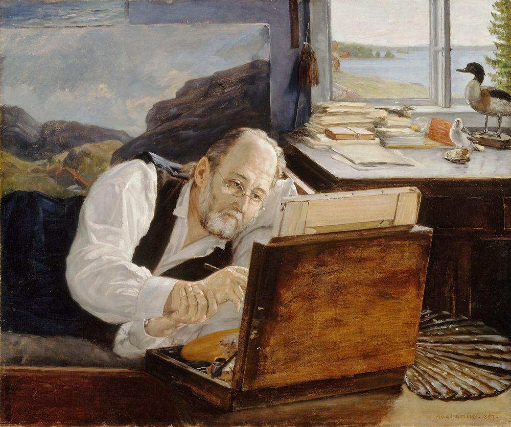 Ferdinand von Wright työssään