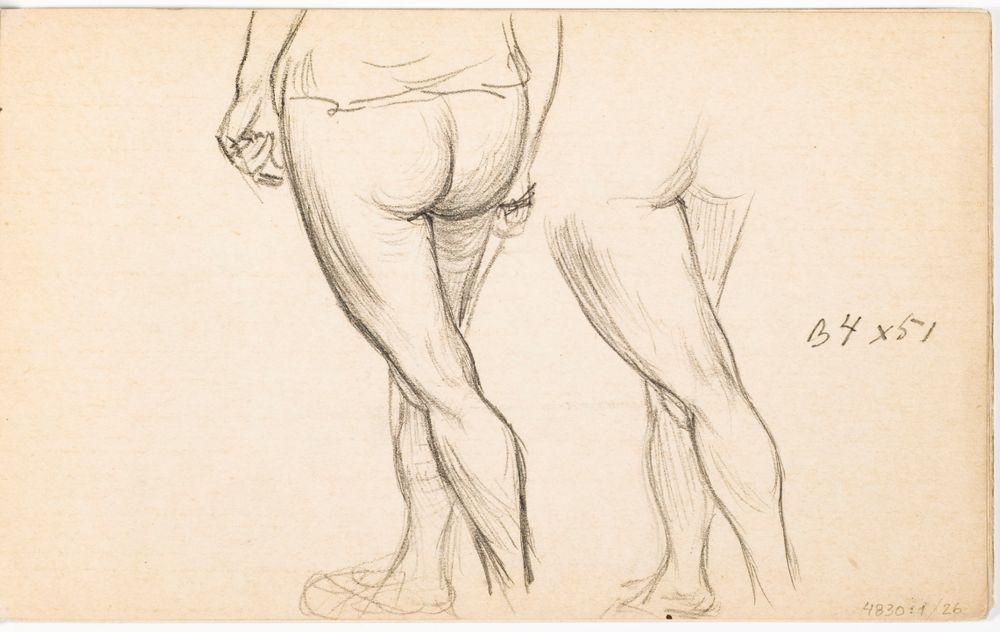 Naisen jalat ja pakarat, Naisen jalat