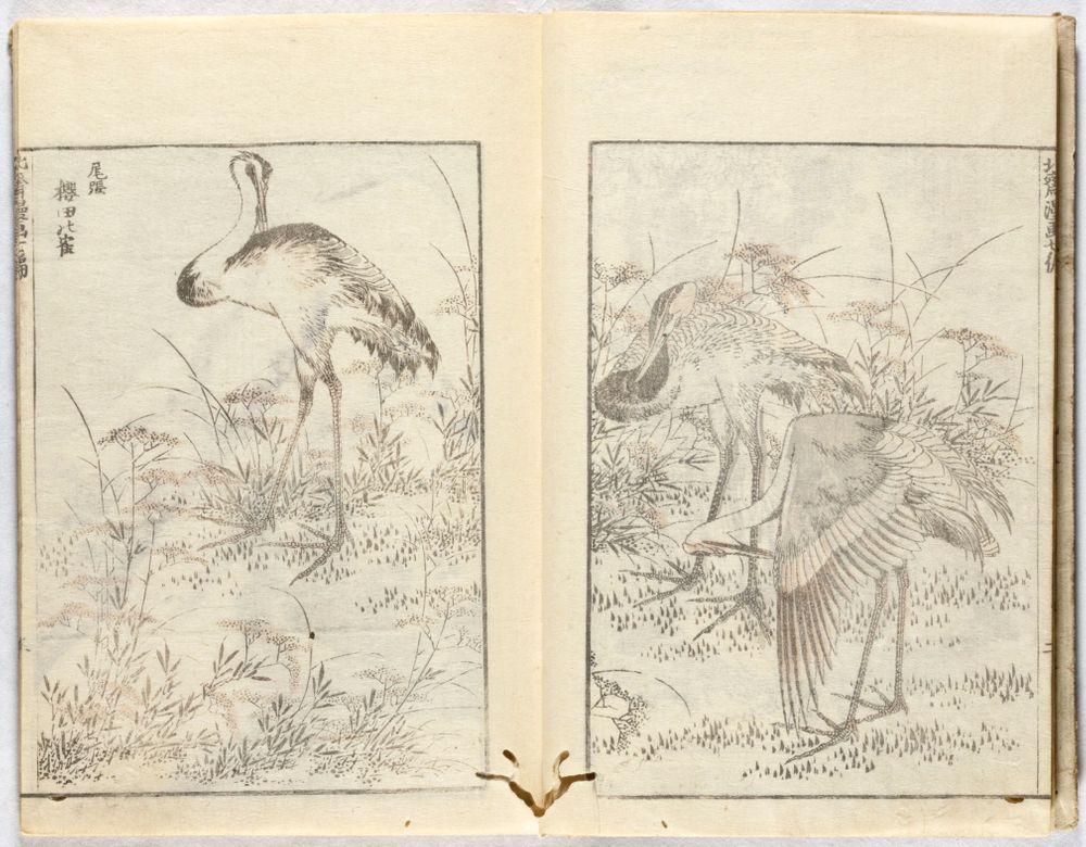 Hokusai Manga (kuvakirja), vol. VII