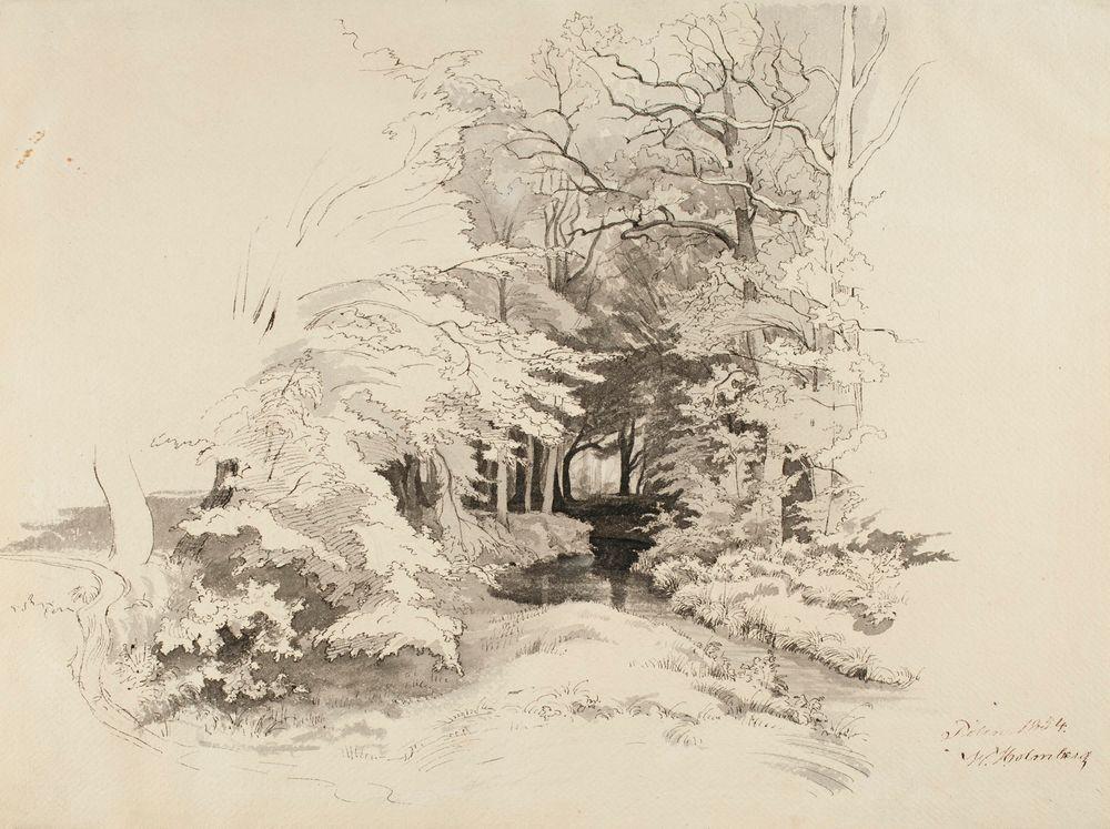 Puro metsässä