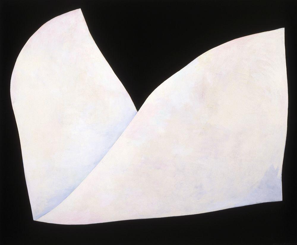 Valkoinen lintu