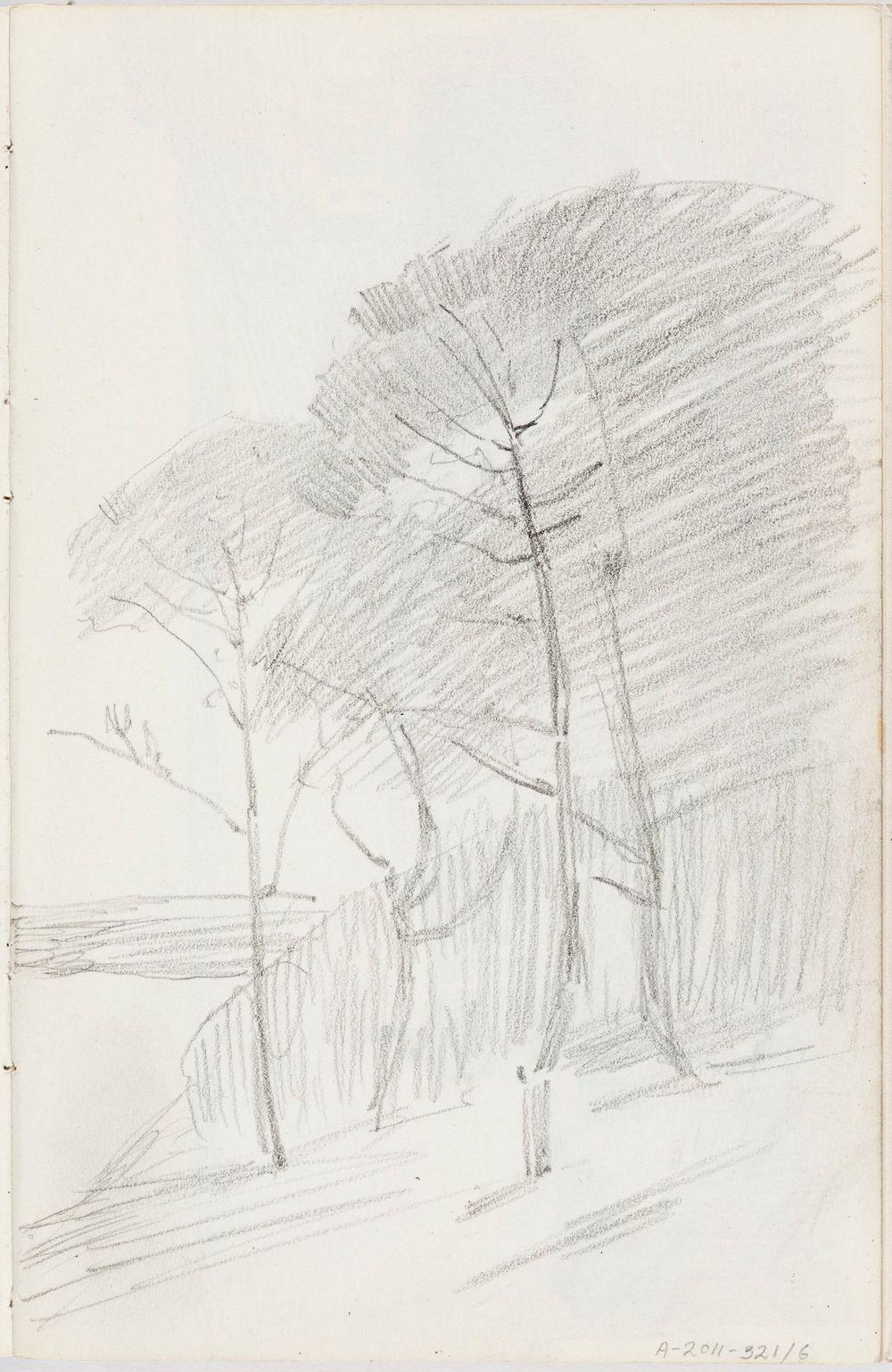 Maisema St. Ivesistä, puita,  n. 1887-1888