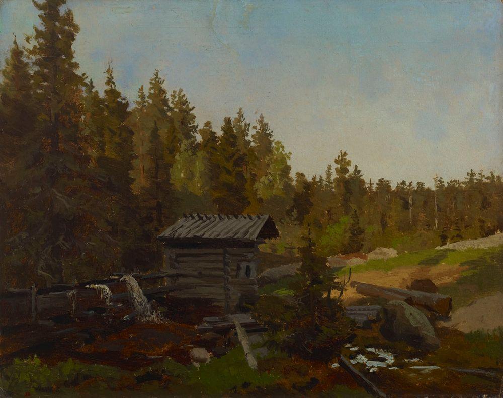 Vesimylly suomalaisessa metsässä