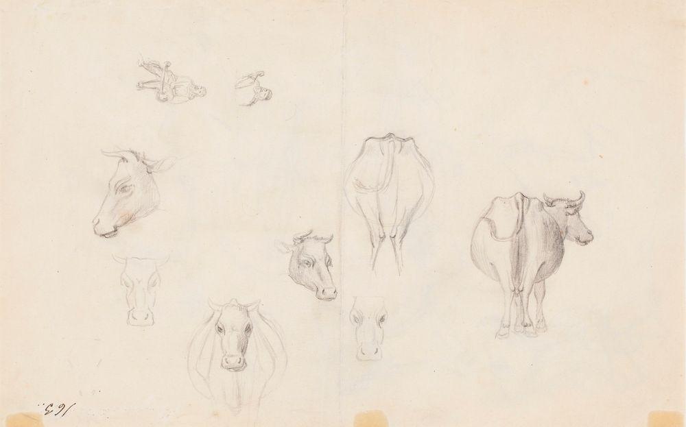 Luonnoksia lehmästä ; Luonnoksia lehmästä, lisäksi pienet luonnokset Väinämöisestä (kaksipuolinen teos)