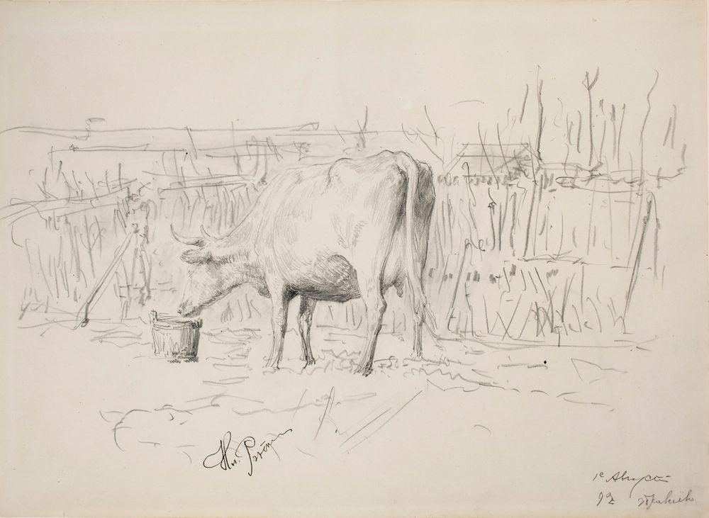 Lehmä, Zdravnevo