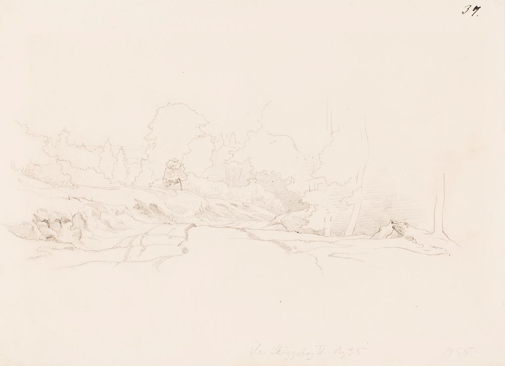 Metsäinen ja kallioinen maisema, etualalla aukea