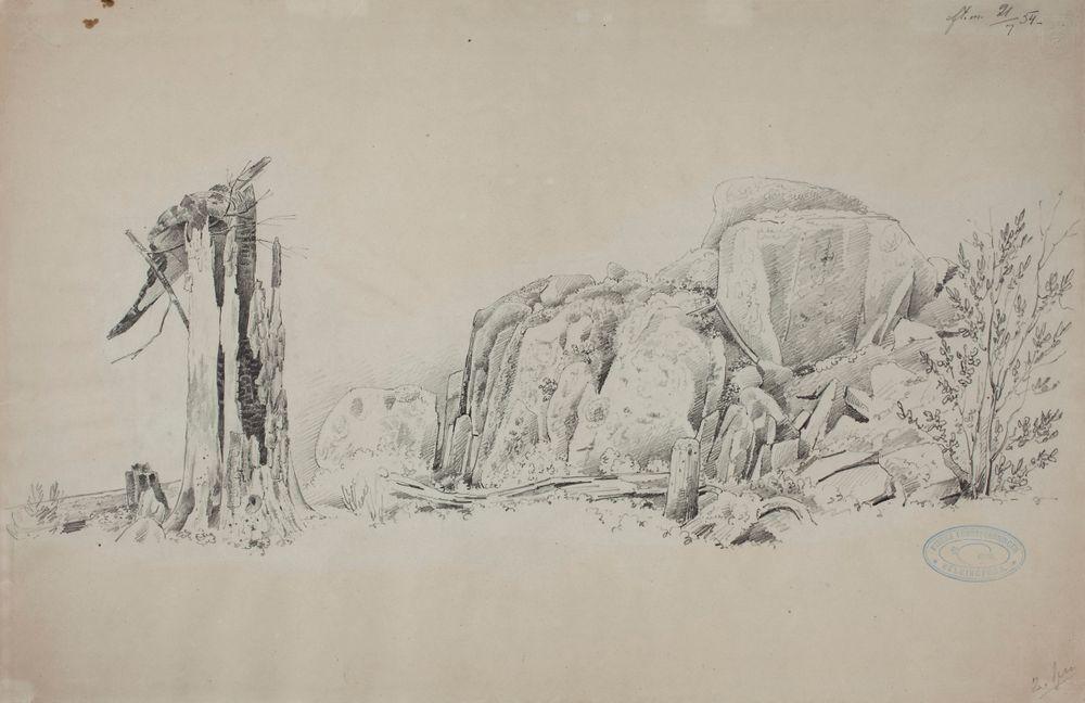 Kalliolohkareita, kanto ja suuri kaatunut puu, Suopeltovuori, Haminalahti