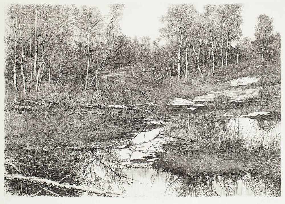 Veden rantamilla, puun haara