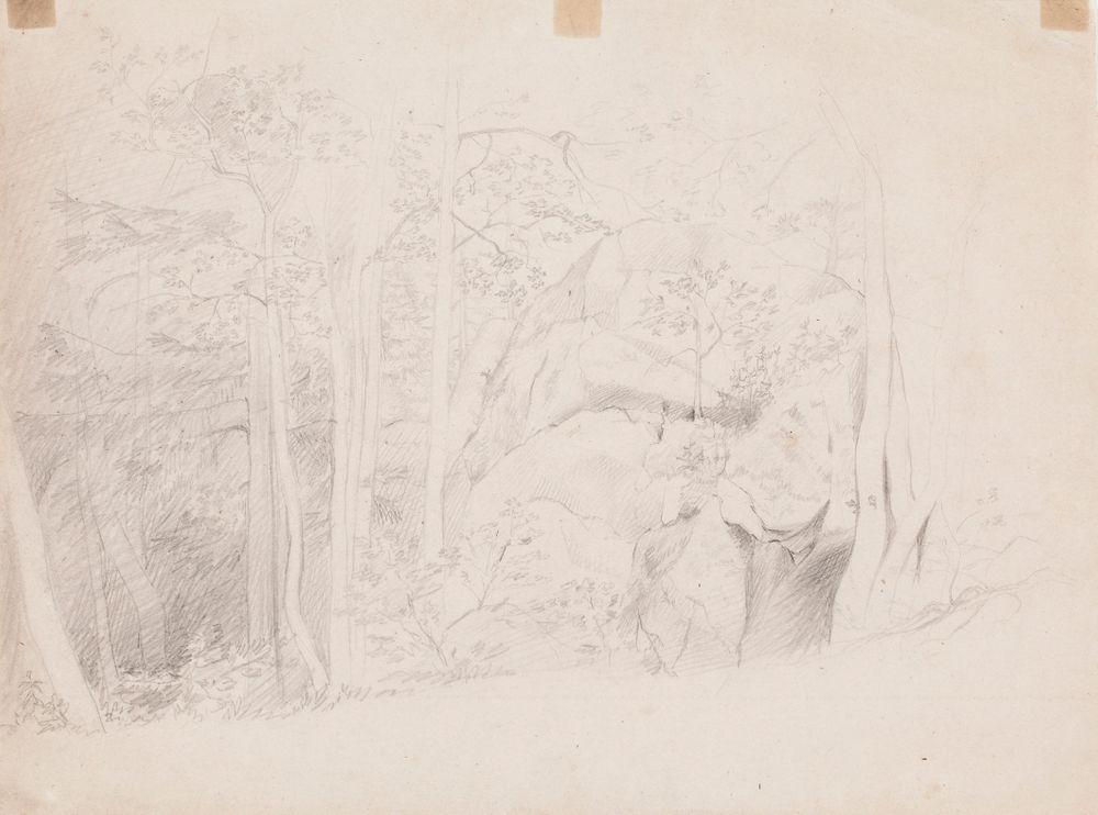 Metsänsisusta, keskellä iso kivilohkare