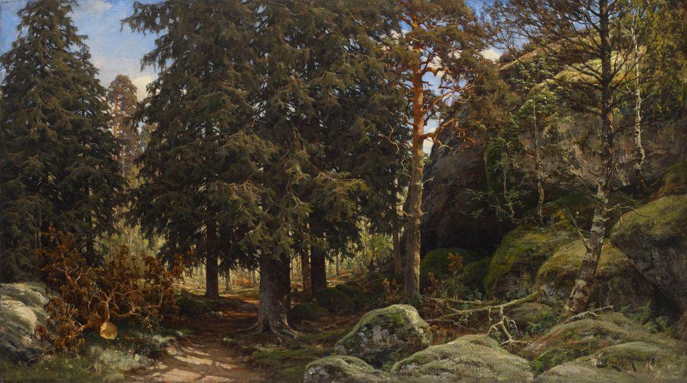 Metsänsisusta