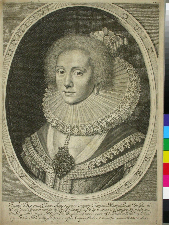 Nassaun kreivitär Amalia