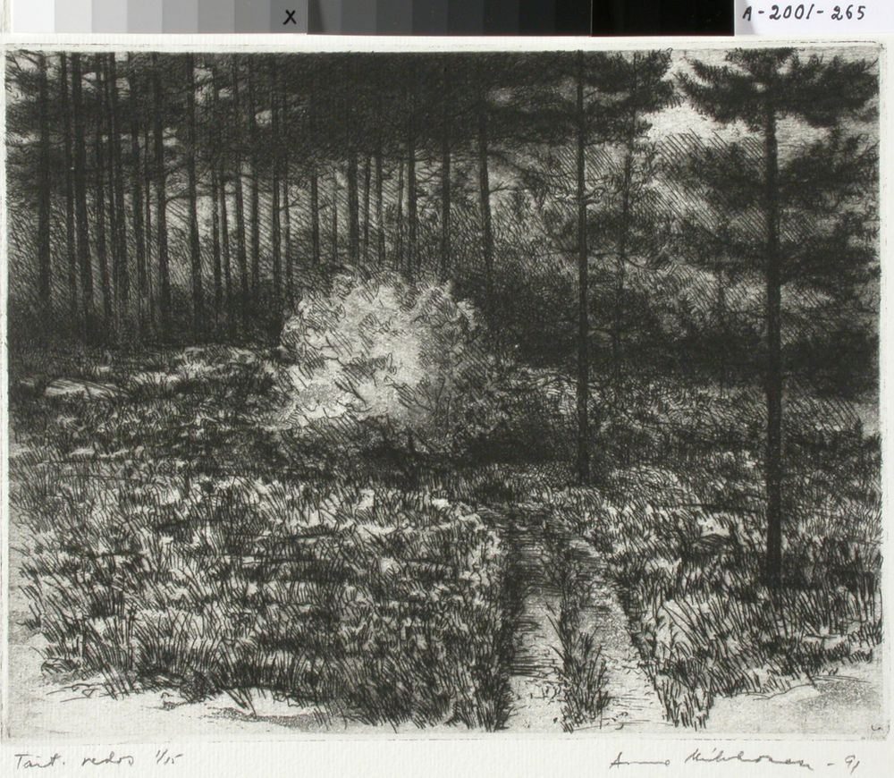 Metsäpolku