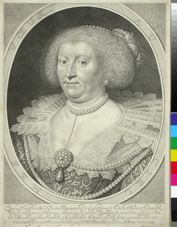 Sophie Hedvig, Nassaun kreivitär