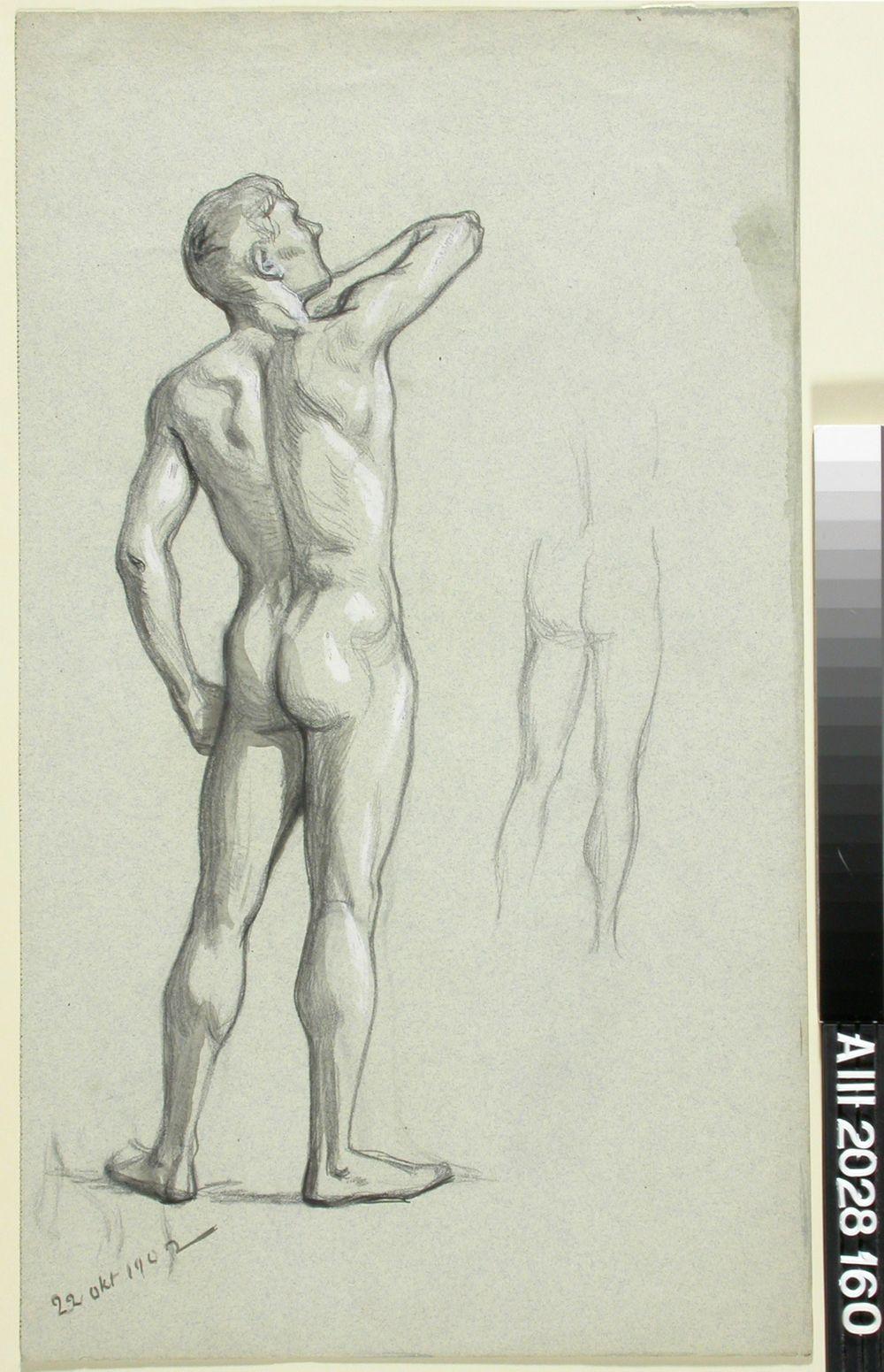 Seisova alastonmalli takaapäin