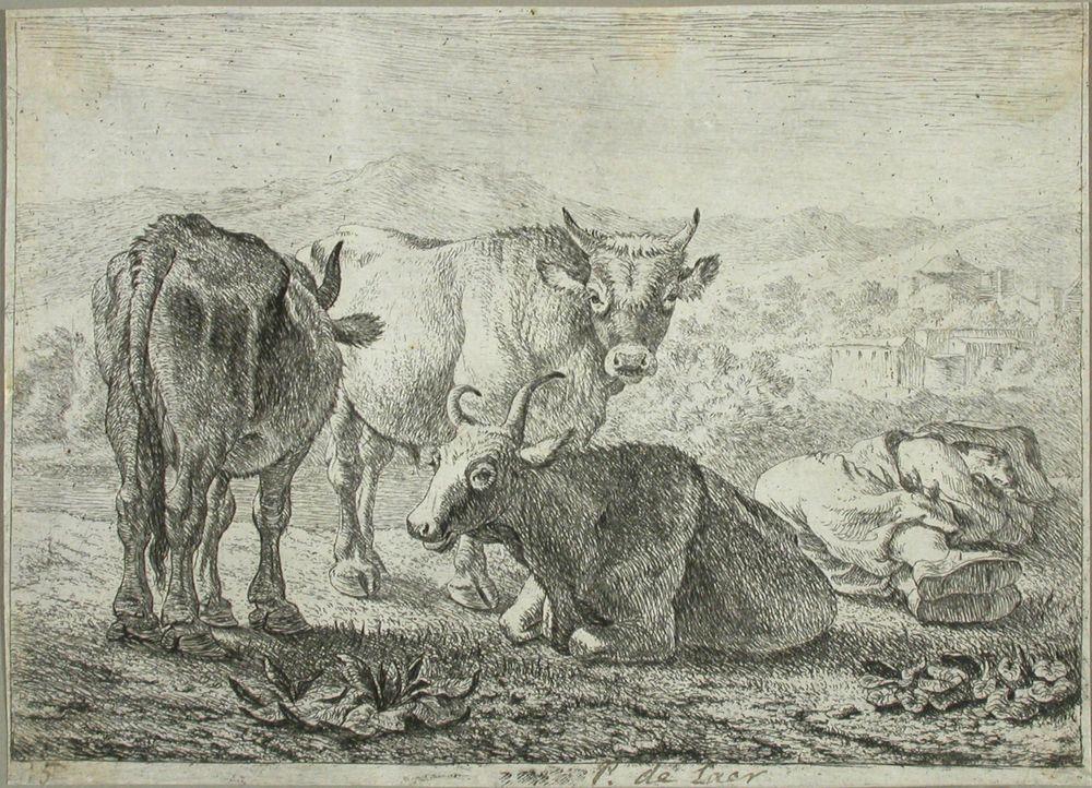 Kolme härkää