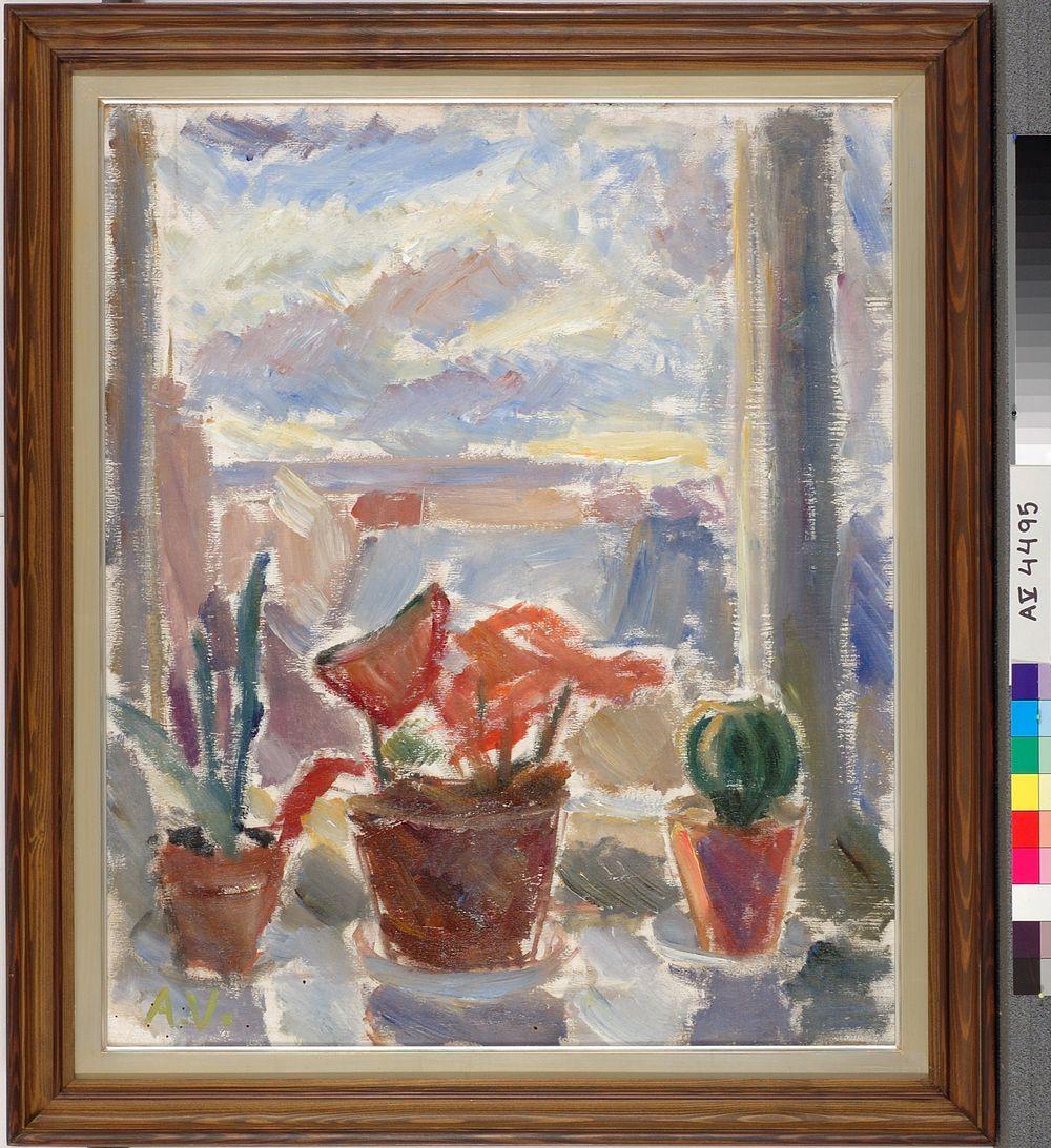 Kukkia ikkunalla