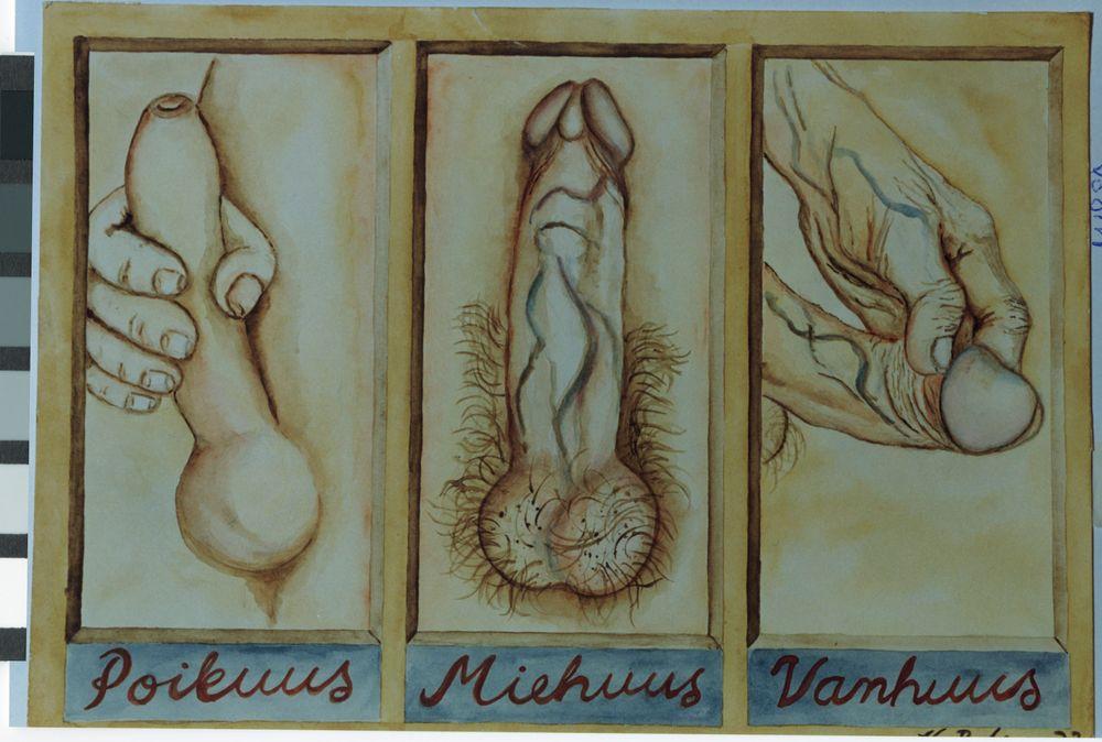 Miehen kolme vaihetta
