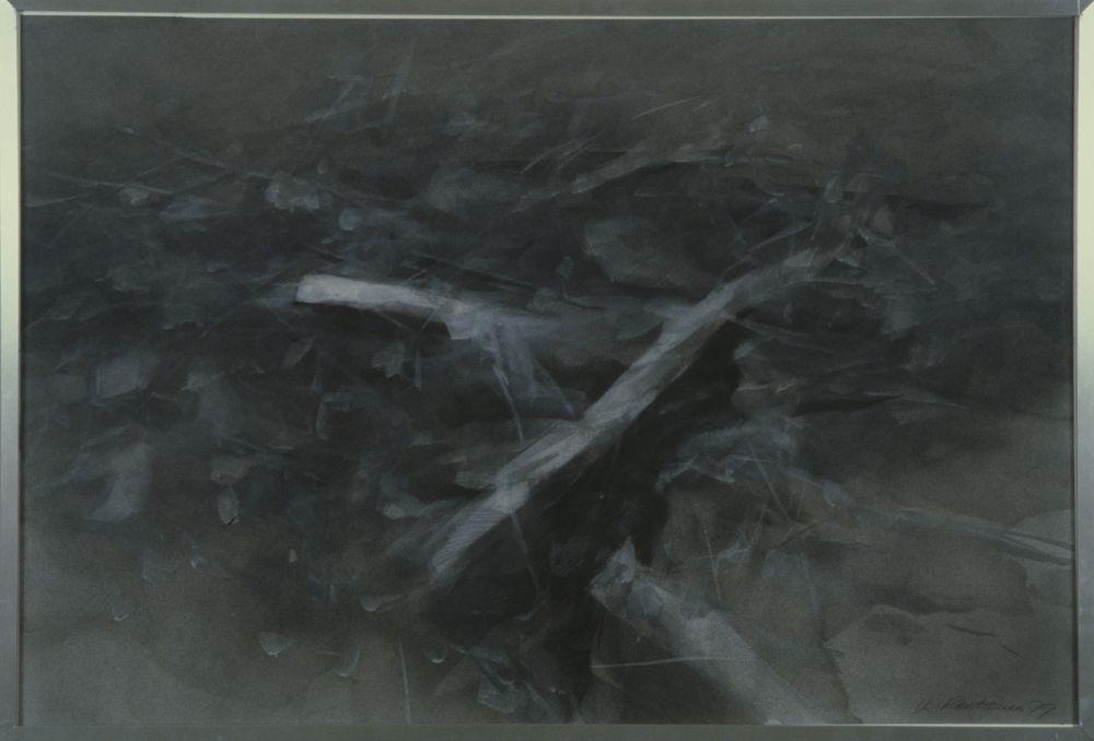 Luonnonaihe 9/79