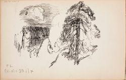 Luonnoskirja, n. 1905 - 1908