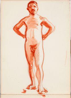 Luonnoskirja, noin 1908 - 1909