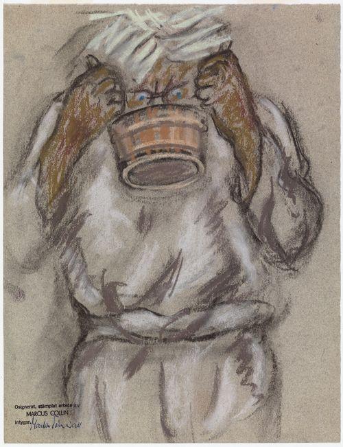 Kiulusta juoja, Seitsemän veljestä -kuvitus