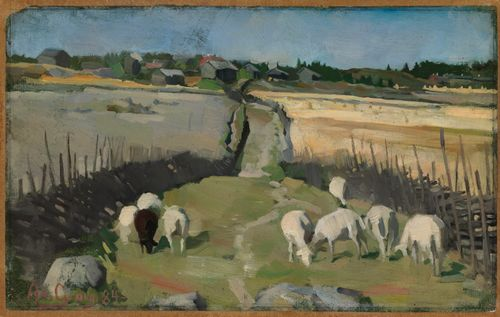 Kylämaisema lampaineen