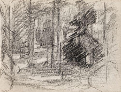 Metsää, luonnos