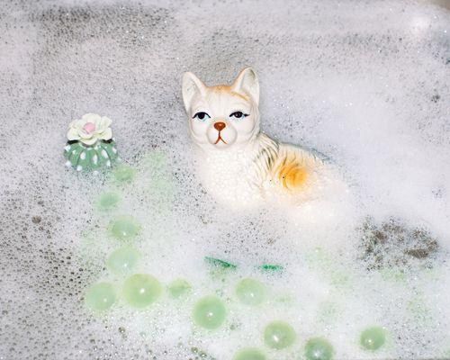 Kylpykissa