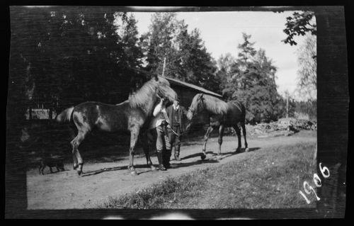 Miehet hevosineen, taustalla Niemenlautan kartanon paja
