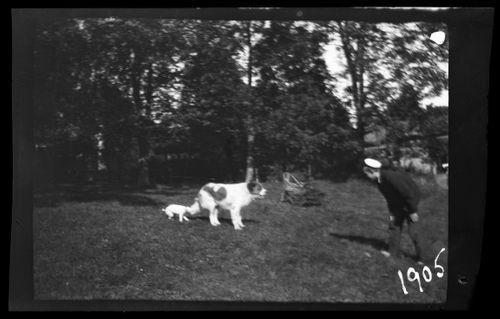 Guido Simberg leikkii Balun ja Sarton kanssa pihalla