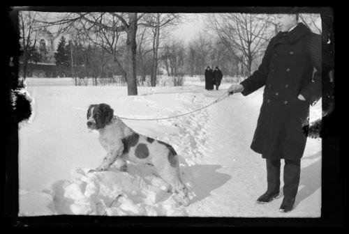 Mies ja Sarto Viipurin puistossa