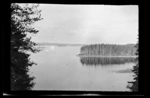 Maisemanäkymä Savonlinna-Kuopion väliseltä höyrylaivamatkalta