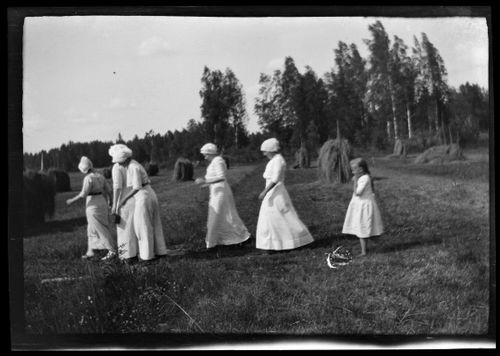 Heinänkorjuuväkea, Elma, Erna ja Inge Simberg, Lisa ja Karin Andersin sekä perässä tuleva tyttö