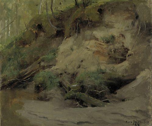 Metsää ja hiekkarinne