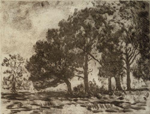 Metsikkö