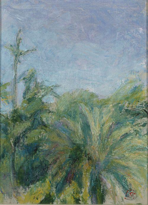 Palmuja