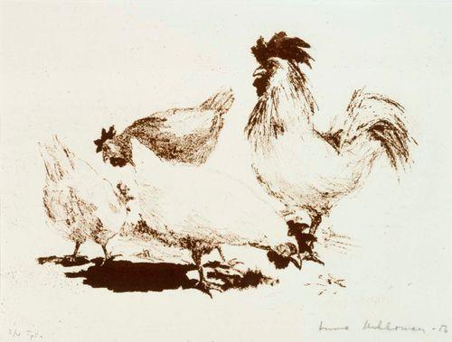 Kukko, kanoja ja pieni musta kana
