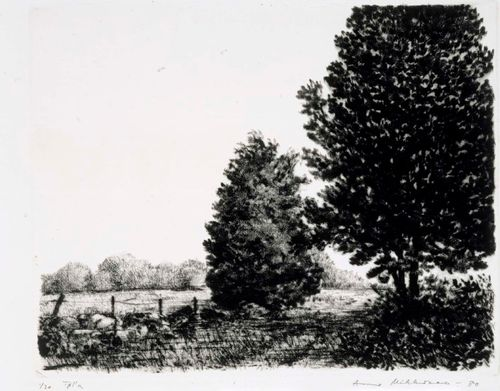 Kaksi puuta