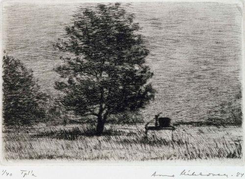 Kaivo ja puu