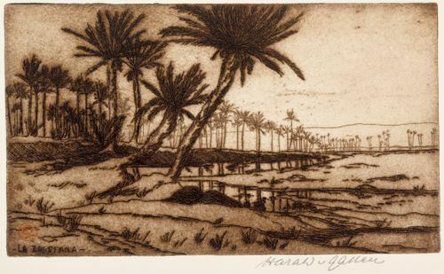 La Zousfana (palmumaisema)
