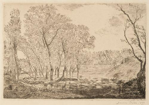 Pond with poplars