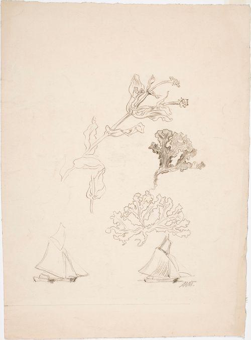 Harjoitelmia, kasveja ja purjeveneitä