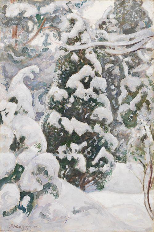 Luminen kataja