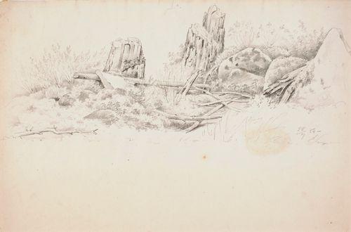 Kantoja ja kiviä