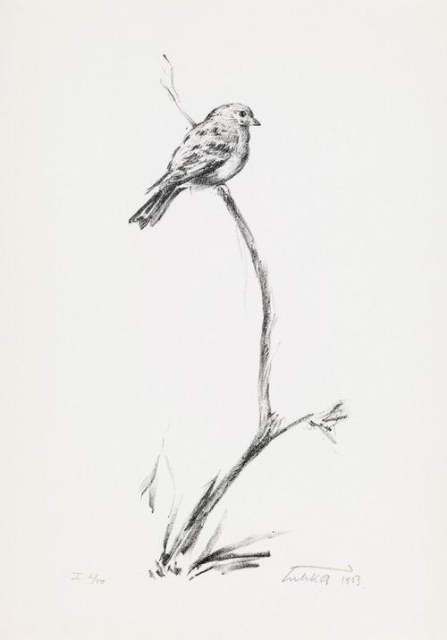 Lintu oksalla
