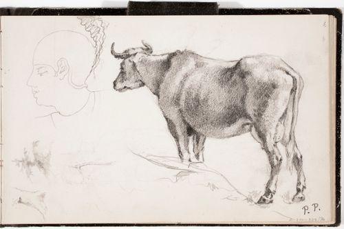Puun runko ja kuusentaimi ; egyptiläisen miehen pää ; lehmä Paulus Potterin mukaan, merkitty P. P.
