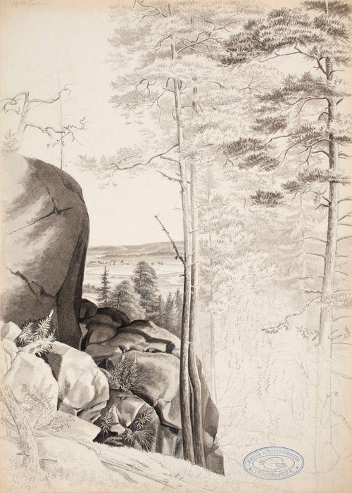Vuorimaisema, näköala yli tasangon, jyrkkä kallio ja mäntyjä