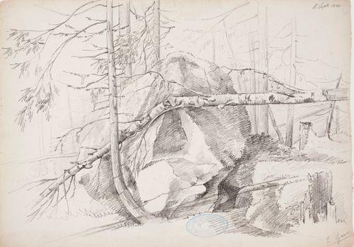 Metsänsisusharjoitelma, jossa keskellä on iso kivi